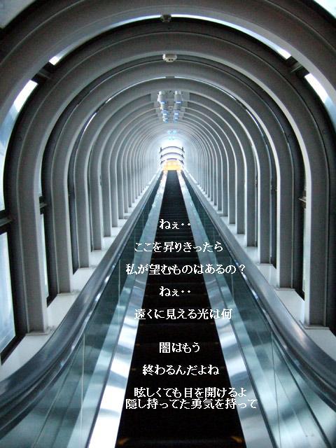 b0165858_9501389.jpg