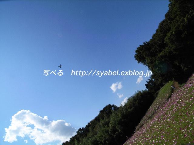 c0153764_19402020.jpg