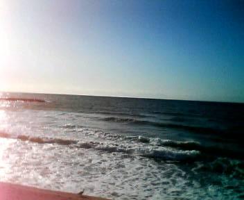 太櫓海岸_b0106766_1547935.jpg