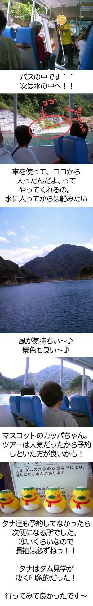 f0119369_1516886.jpg