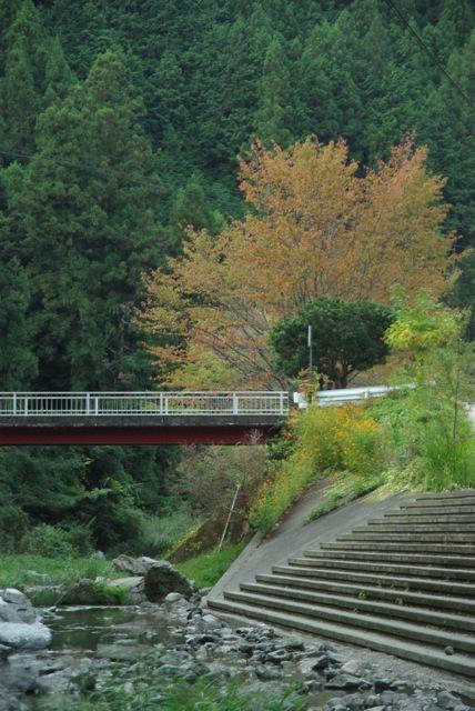 下市町森林公園やすらぎ村オートキャンプ_e0139376_0221975.jpg