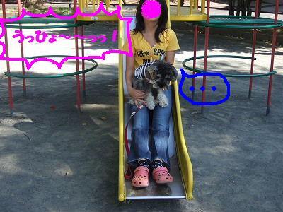b0143879_21441077.jpg