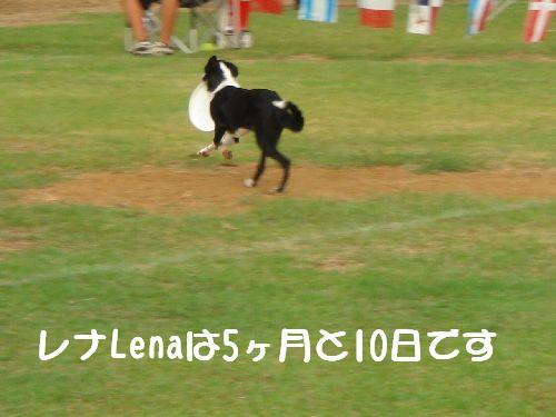 b0101991_1625777.jpg