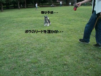 f0197317_14333017.jpg