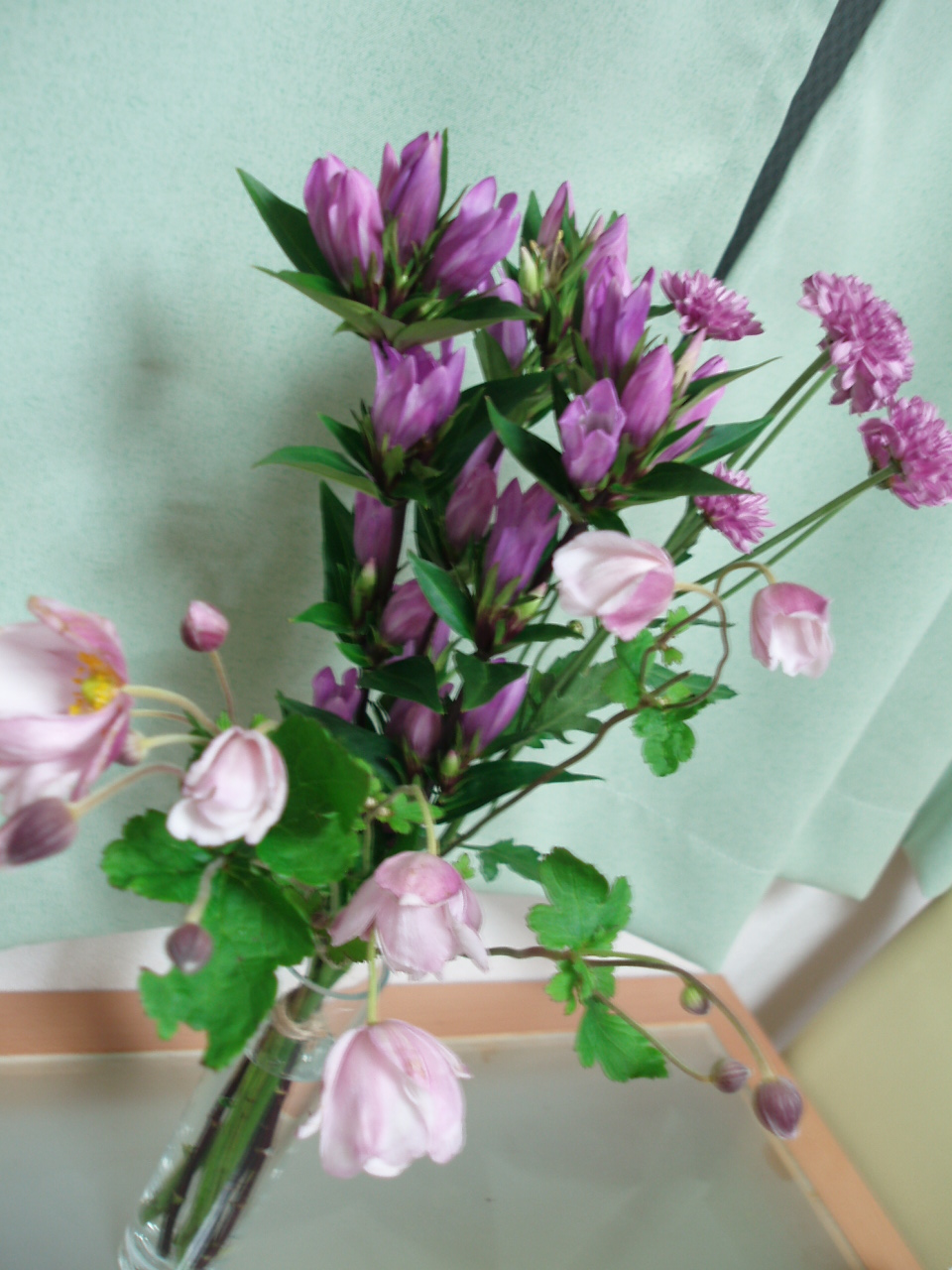 花!花!花!お花の衝動買い??_b0137453_2214013.jpg