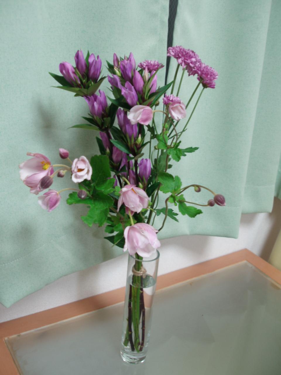 花!花!花!お花の衝動買い??_b0137453_22194586.jpg