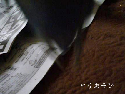 e0147757_19125357.jpg