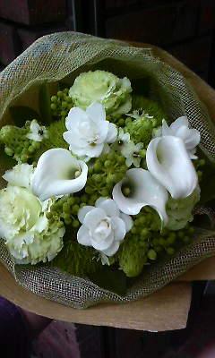 秋の白グリーン_c0137266_22201682.jpg