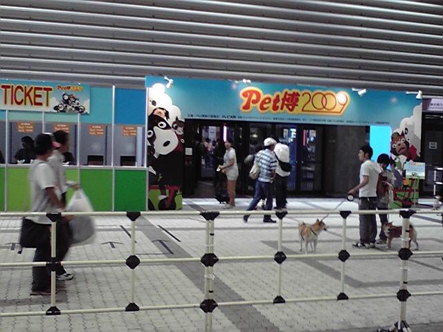 関西キャンピングカーショー2009_c0127476_10435565.jpg