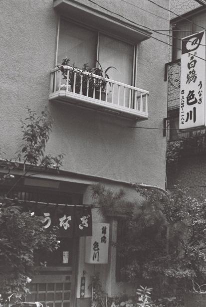 Asakusa, mono #2_e0174281_2225413.jpg