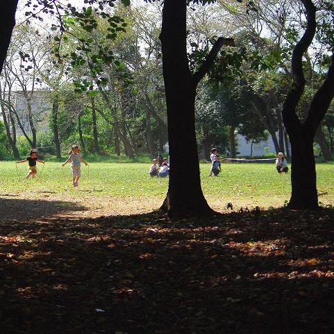 森の運動会_d0147812_18583859.jpg