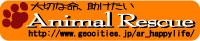 b0137913_1494812.jpg