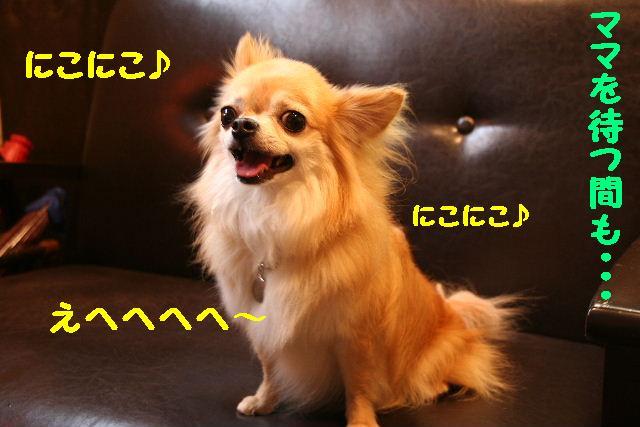 b0130018_1854861.jpg