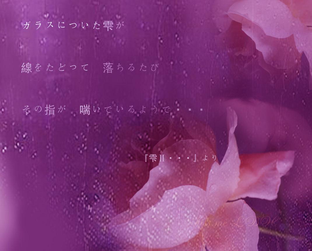 f0013346_745308.jpg