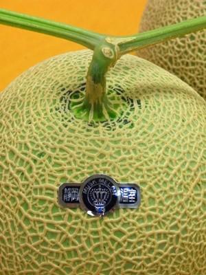 crown melon_c0019551_12414349.jpg