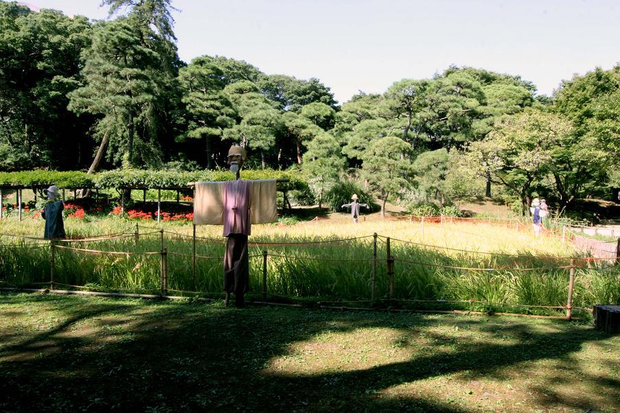 秋の庭                      小石川後楽園_a0107574_84328.jpg