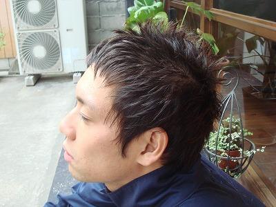 ベリーショート_c0184210_16195046.jpg
