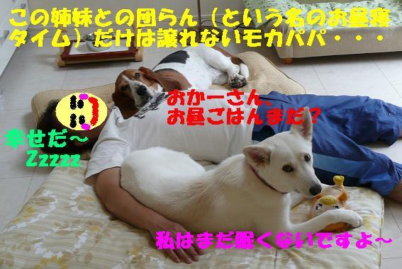 f0121712_22511042.jpg