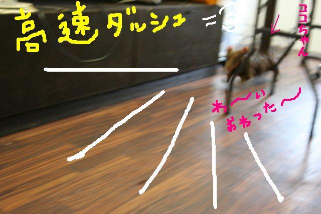 b0130018_13574072.jpg