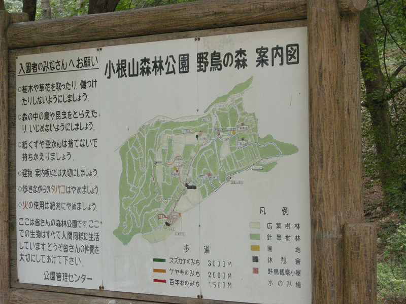 軽井沢の旅①_f0100825_1120591.jpg