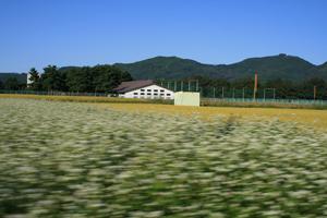 長野散歩 その3_d0120629_2353652.jpg