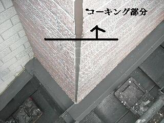 f0031037_18382953.jpg
