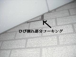 f0031037_1838485.jpg