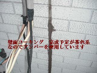 f0031037_18391251.jpg