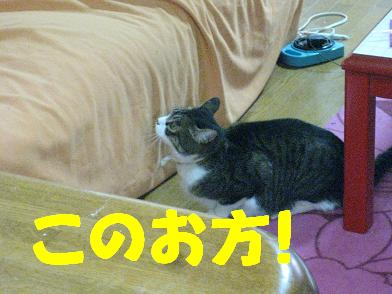 b0151748_2037741.jpg