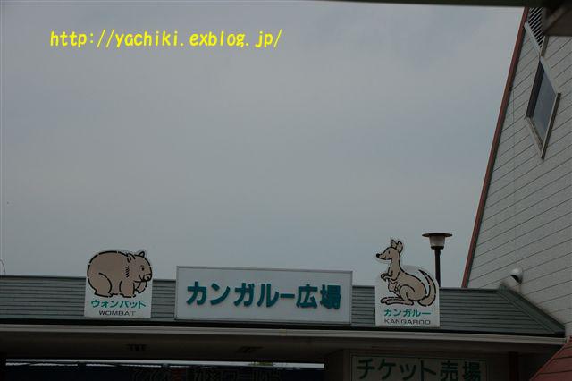 b0153451_0114361.jpg