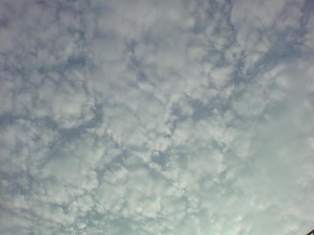 「秋の空!秋の雲!」_e0051174_63784.jpg