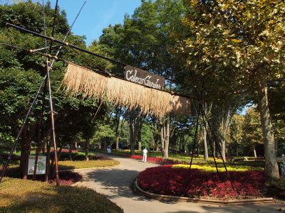 武蔵丘陵森林公園_a0027275_1753668.jpg