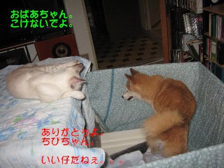 f0155475_10145441.jpg