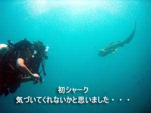 どんぶらこっ、どんぶらこっとピピ島へ_f0144385_23565480.jpg