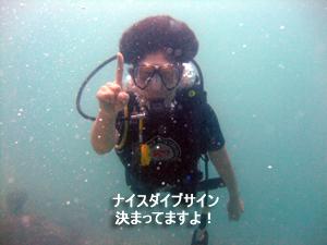 どんぶらこっ、どんぶらこっとピピ島へ_f0144385_23594169.jpg