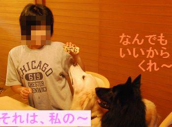 f0109202_230032.jpg