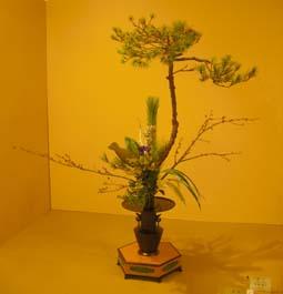 池坊の花展(2009秋 高岡)_e0008704_19323678.jpg