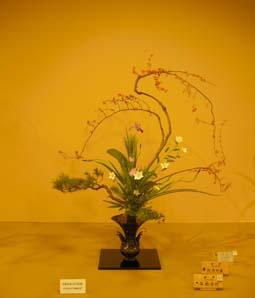 池坊の花展(2009秋 高岡)_e0008704_1933372.jpg
