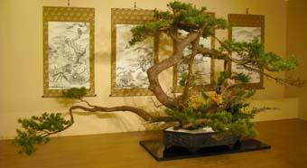 池坊の花展(2009秋 高岡)_e0008704_1934439.jpg