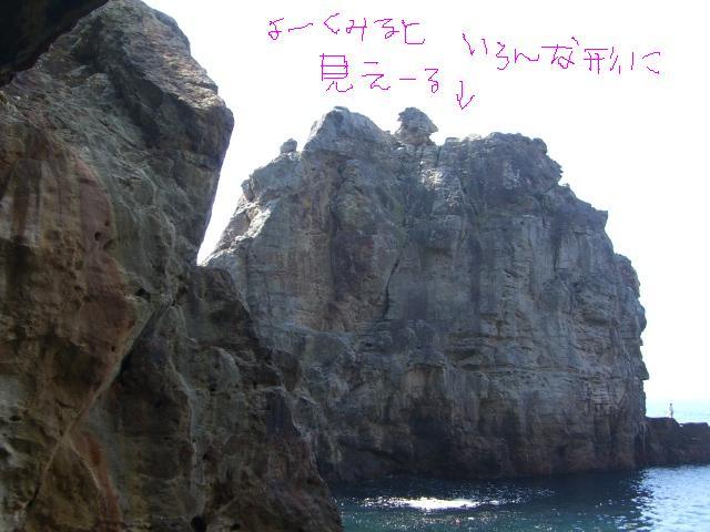 和歌山①_a0088007_1625781.jpg
