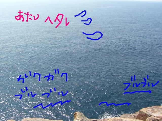 和歌山①_a0088007_16291416.jpg