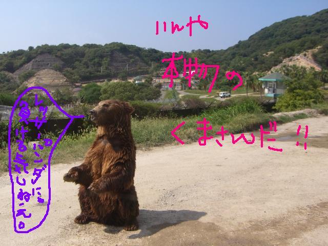 和歌山③_a0088007_1863686.jpg