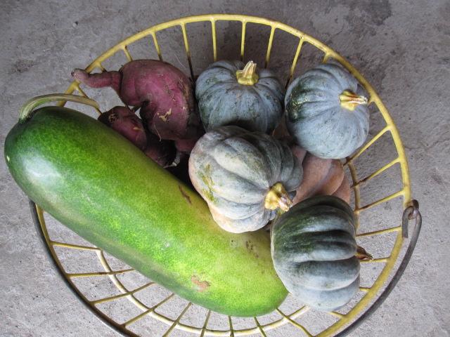 harvest  home_c0200314_1235276.jpg