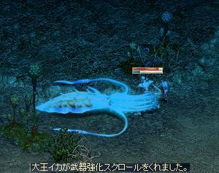 f0101117_19544427.jpg