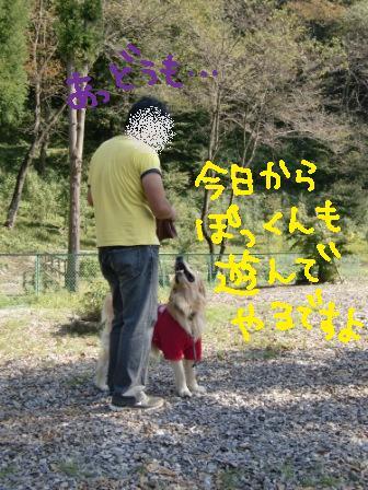 f0176830_1441513.jpg