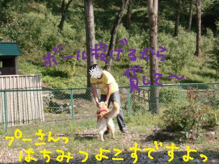 f0176830_146512.jpg