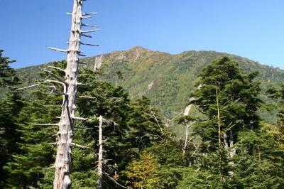 北関東の百名山を2つ登るⅡ 男体山 2486m 栃木県_d0055236_17513948.jpg