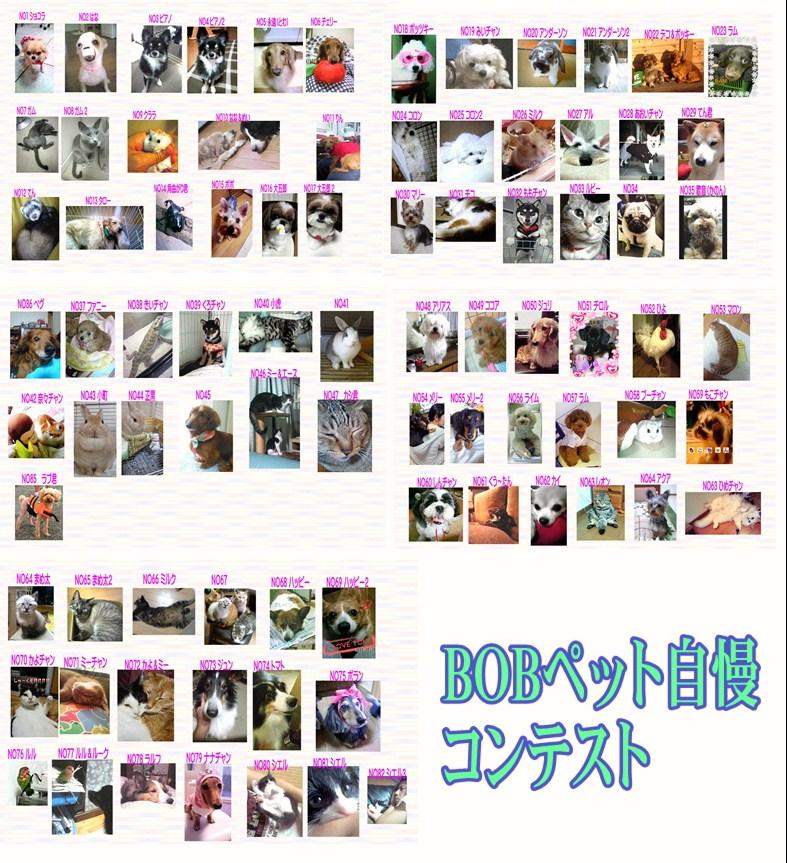 f0189845_16564859.jpg