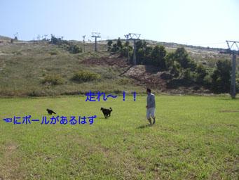 b0091153_18535230.jpg