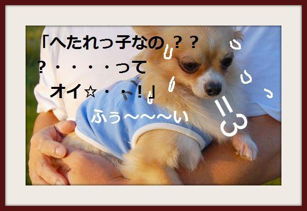 b0112758_2105555.jpg
